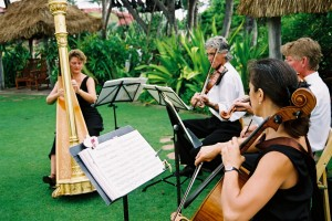 Harp, Violin, Cello for Wedding Music