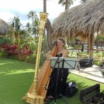 Harp on Ocean Front Lawn, Four Seasons Maui, 10/10/10